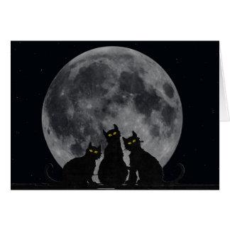 Cartão silhueta dos gatos no luar