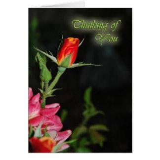 Cartão Simpatia cor-de-rosa brilhante