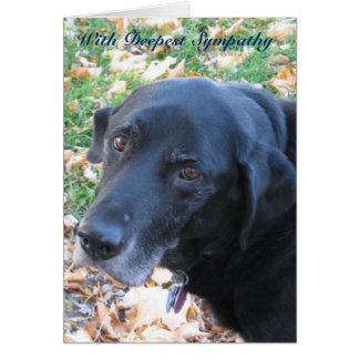 Cartão Simpatia do animal de estimação