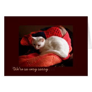 Cartão Simpatia do gato do animal de estimação