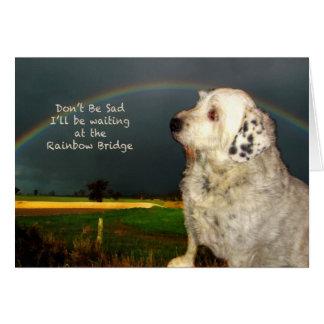 Cartão Simpatia para a perda de cão de estimação