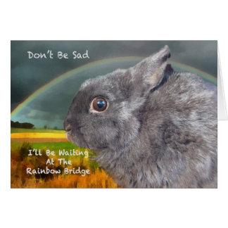 Cartão Simpatia para a perda de coelho do animal de