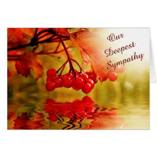Cartão Simpatia vermelha da reflexão da baga