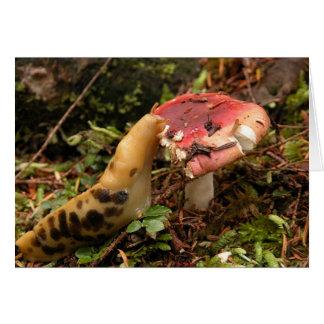 Cartão Slug com fome