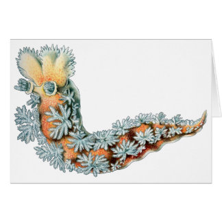 Cartão Slug de mar