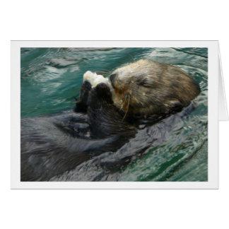 Cartão Snacking da lontra de mar