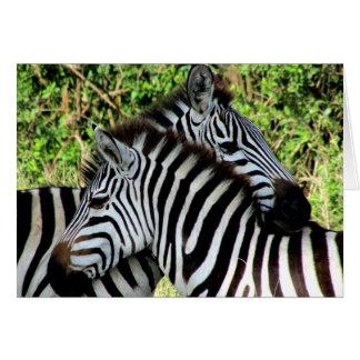 Cartão snuggles da zebra