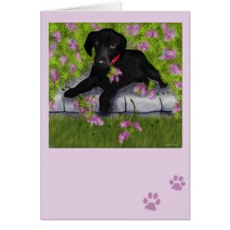 Cartão Sob os Lilacs