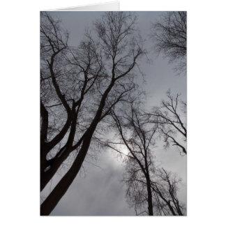 Cartão Solidão do inverno