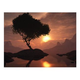 Cartão solitário da árvore