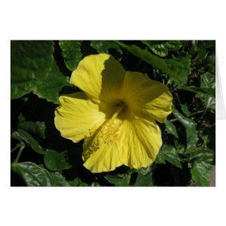 Cartão Sombra de Blank_Yellow