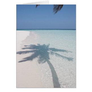 Cartão Sombra de uma palmeira em uma praia abandonada da