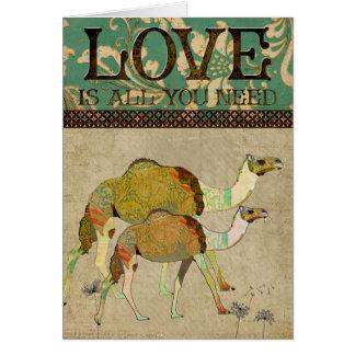 Cartão sonhador do amor dos camelos
