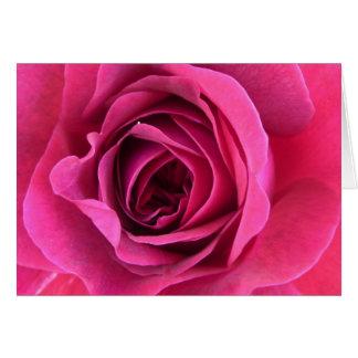 Cartão Sonho de rosa em rosa