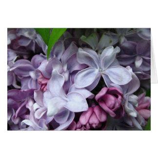 Cartão Sonho do Lilac