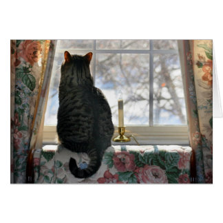 Cartão Sonho do White Christmas - gato na janela