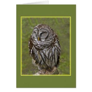 Cartão sonolento da coruja