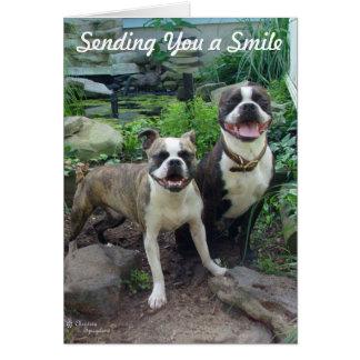 Cartão Sorriso que pensa de você senhorita que você carda