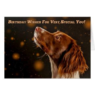 Cartão Spaniel de Springer de Brown e de creme, desejos