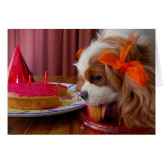Cartão Spaniel dos Cavalier do aniversário de Renae