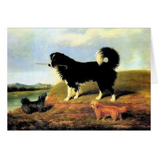 Cartão Spaniel e dois terrier de Norfolk