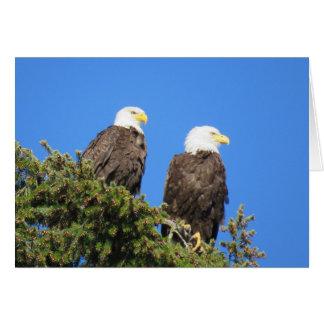 Cartão Sr. e Sra. Eagle