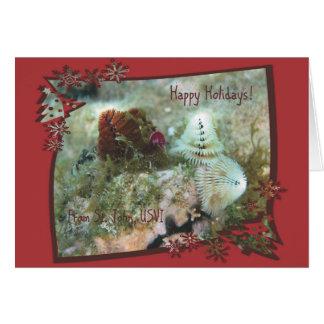 Cartão St John USVI do feriado