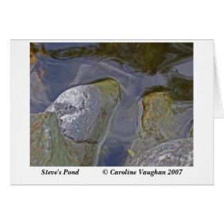 Cartão Steve& apos; musgo da lagoa de s, a lagoa de