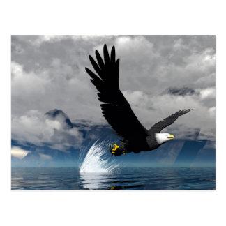 Cartão subindo de Eagle