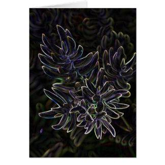 Cartão Succulent Sedum
