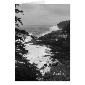 Cartão Surf Notecard do Acadia - 8