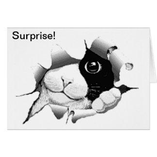 Cartão Surpresa preto e branco curiosa do aniversário do