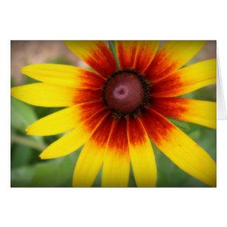 Cartão Susan de olhos pretos - vazio para dentro