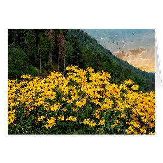 Cartão Susans de olhos pretos nas montanhas