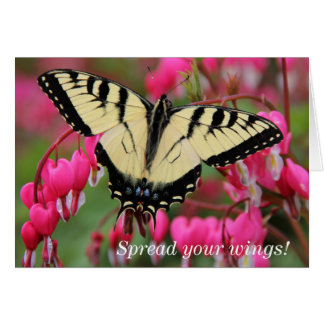 Cartão Swallowtail oriental