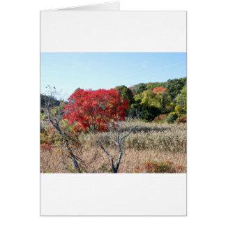 Cartão Tag do folhagem de outono