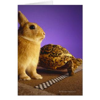 Cartão Tartaruga e a lebre