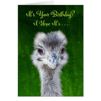 Cartão Tenha um aniversário de Emusing - Emu