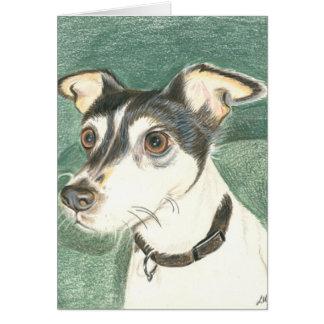Cartão Terrier de raposa de Chelsea