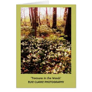 Cartão Tesouros do Trillium nas madeiras