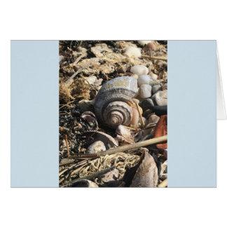 Cartão Tesouros pelo mar. Vazio no interior