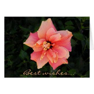 Cartão Texto cor-de-rosa doce do costume da flor do