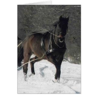 Cartão Thomas na neve