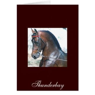 Cartão Thunderbay
