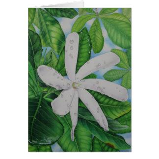 Cartão Tiare Tahiti