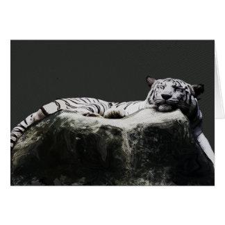 Cartão Tigre branco da neve - sono do gato grande