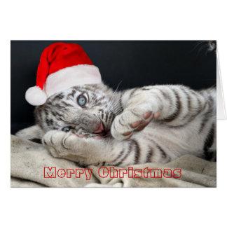 Cartão tigre de bengal branco do bebê com chapéu do Natal