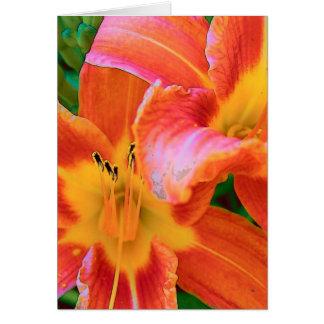 Cartão Tigre Lillies