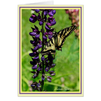 Cartão Tigre Swallowtail