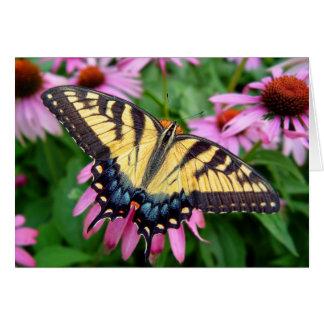 Cartão Tigre Swallowtail da borboleta